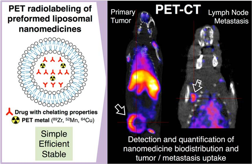 Positron Emission Tomography (PET) Imaging as a treatment prediction tool for personalized nanomedicine